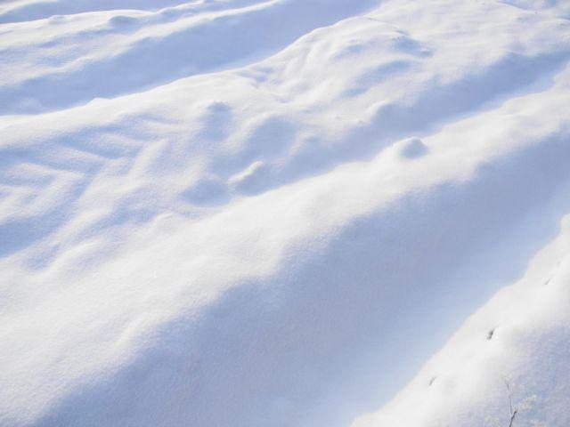 śnieg, pole, biało, zima