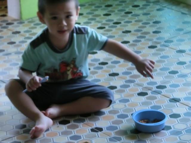 Lil' Iman belajar makan sendiri || 2 tahun 3 bulan