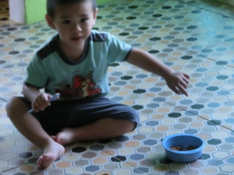 Lil' Iman belajar makan sendiri    2 tahun 3 bulan