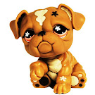 Littlest Pet Shop Singles Bulldog (#607) Pet
