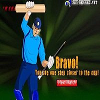 Play Dominator Cup Cricket Game