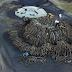Οι καρβουνιάρηδες της Ηπείρου..Δυο Άνθρωποι, 60 τόνοι ξύλα..Τα παραδοσιακά καμίνια[βίντεο]