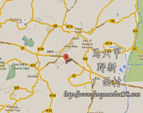 广西村地图