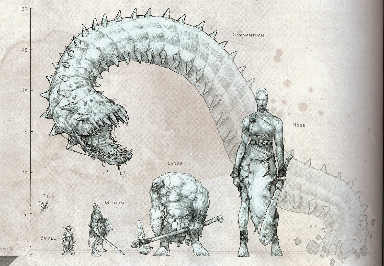Dragon Sizes? : DnD