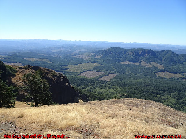 Saddle Mountain Seaside