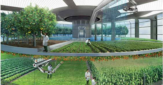 Professor Dickson Despommier of Columbia University, proposes a solution to the problem of future food shortages, creating Vertical Farms