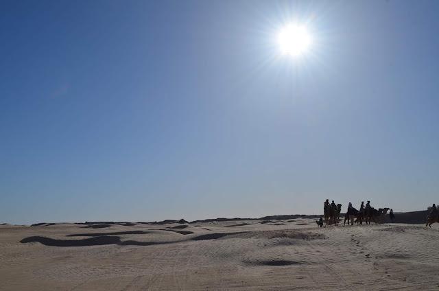 passeio de camelo pelas dunas da Tunísia