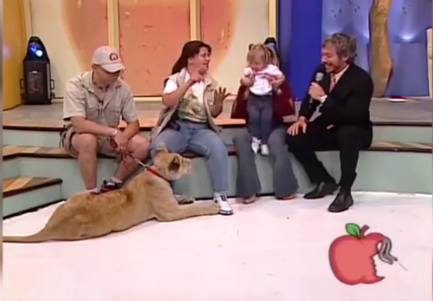 lion attacks baby live tv