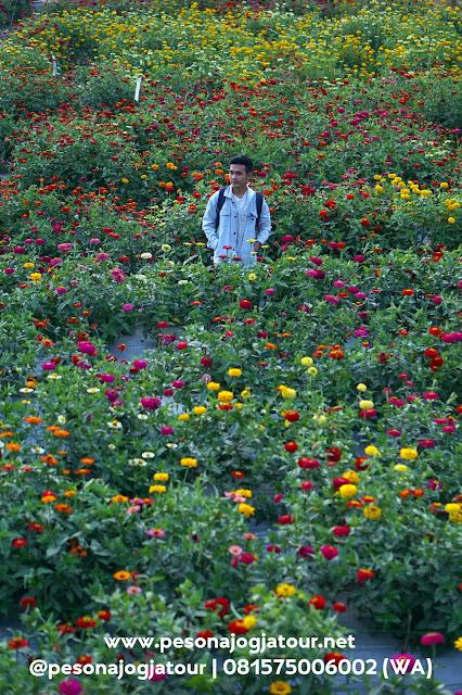 Taman bunga Ramadanu