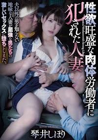 性欲旺盛な肉体労働者に犯●れた人妻 琴井しほり