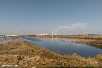 Món Natura Delta