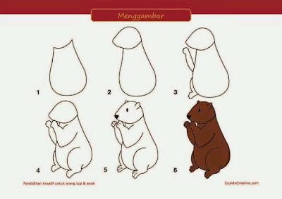 Cara menggambar rakun
