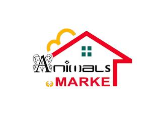 انيمالز دوت ماركت - متجر حيوانات اليفة - اون لاين