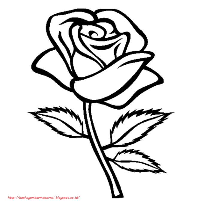 78+ Gambar Bunga Mawar Yang Belum Diwarnai Paling Keren
