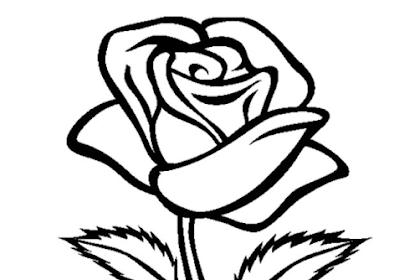 Gambar Bunga Mawar Untuk Mewarnai
