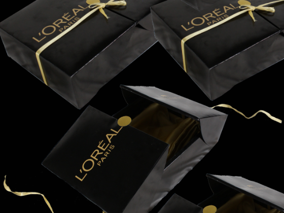 L'oreal Paris Lingerie Student Concept on Packaging of the