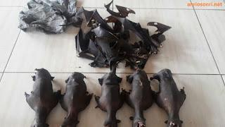 Kelelawar - Pasar Ekstrim Tomohon