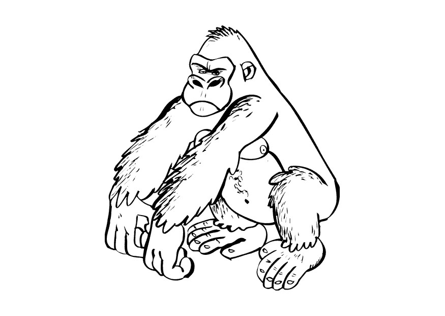 Gorilla Easy Drawing How To Draw A Gorilla