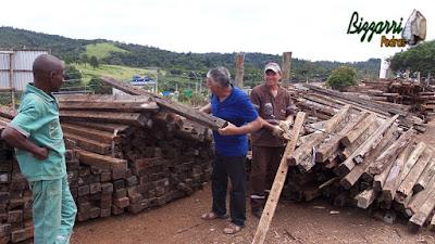 Bizzarri visitando um depósito de madeira de demolição. Na foto escolhendo peças de cruzeta de madeira de demolição. São peças de madeira de árvore de Ipê e madeira de Jacarandá, ideal para fazer mesa de madeira, pontes de madeira, deck de madeira e treliça de madeira no jardim. 24 de março de 2017.