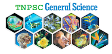TNPSC General Science Study Materials, Notes, Questions Answers in Tamil PDF Download