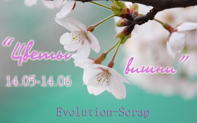 evolution-scrap