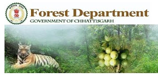 Chhattisgarh Forest Guard Previous Papers