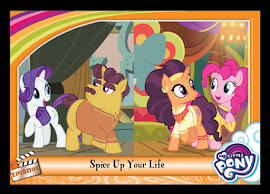 MLP Spice Up Your Life Series 5 Trading Card