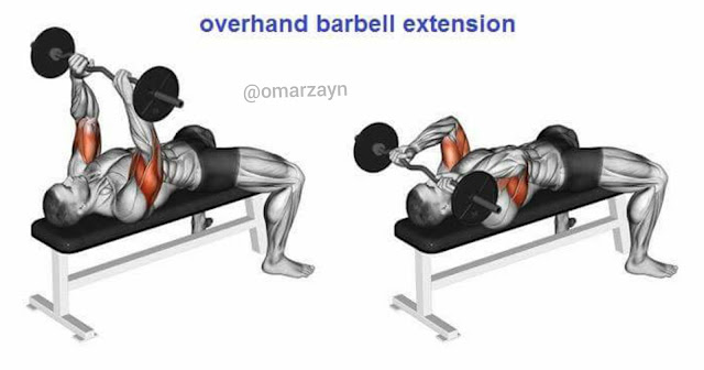 overhead barbell extension triceeps workout