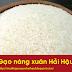 Về Hải Hậu - Nhớ cơm nước gạo nàng xuân