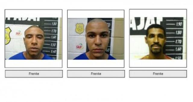 Identificadas três vítimas de homicídios em construção abandonada, na Atalaia
