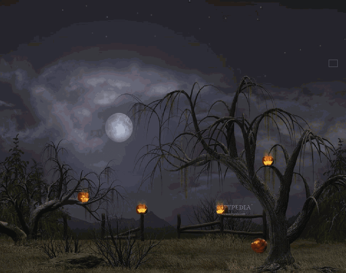 animated halloween wallpaper witches - photo #2