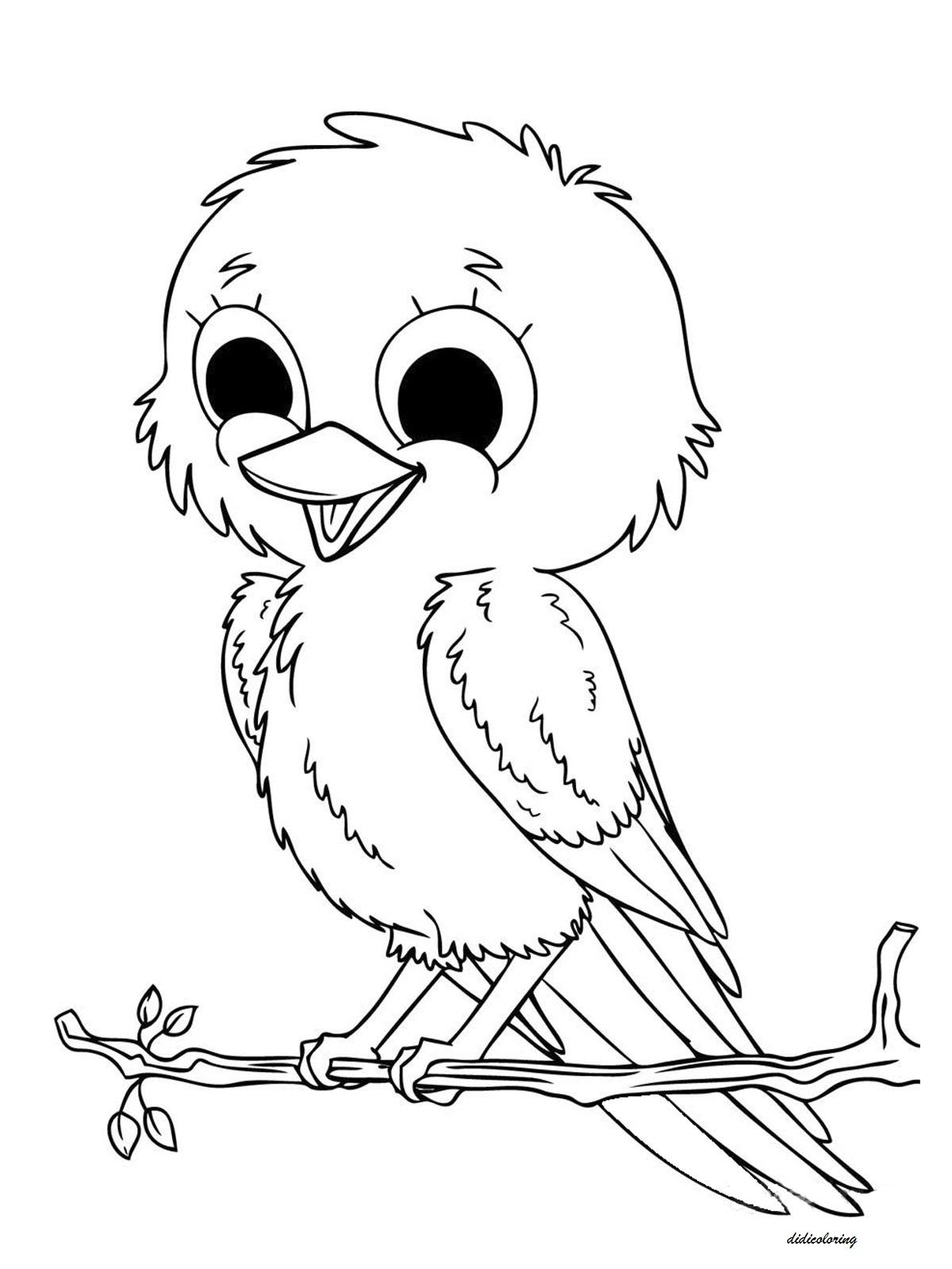 sweetlittle bird  big beautiful eyes sitting on tree