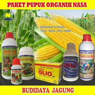 AGEN NASA DI Air Napal Bengkulu Utara - TELF 082334020868