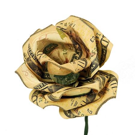 money flower, money