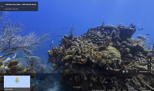 Google Lat Long: Take a swim with Street View on World Oceans Day