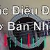 Các điệu đàn cơ bản nhất dành cho người mới (Hướng dẫn chi tiết)