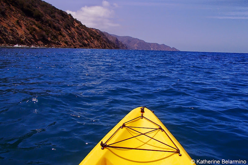 Leopards and Lions Kayak Tour Descanso Beach Ocean Sports Catalina Island California
