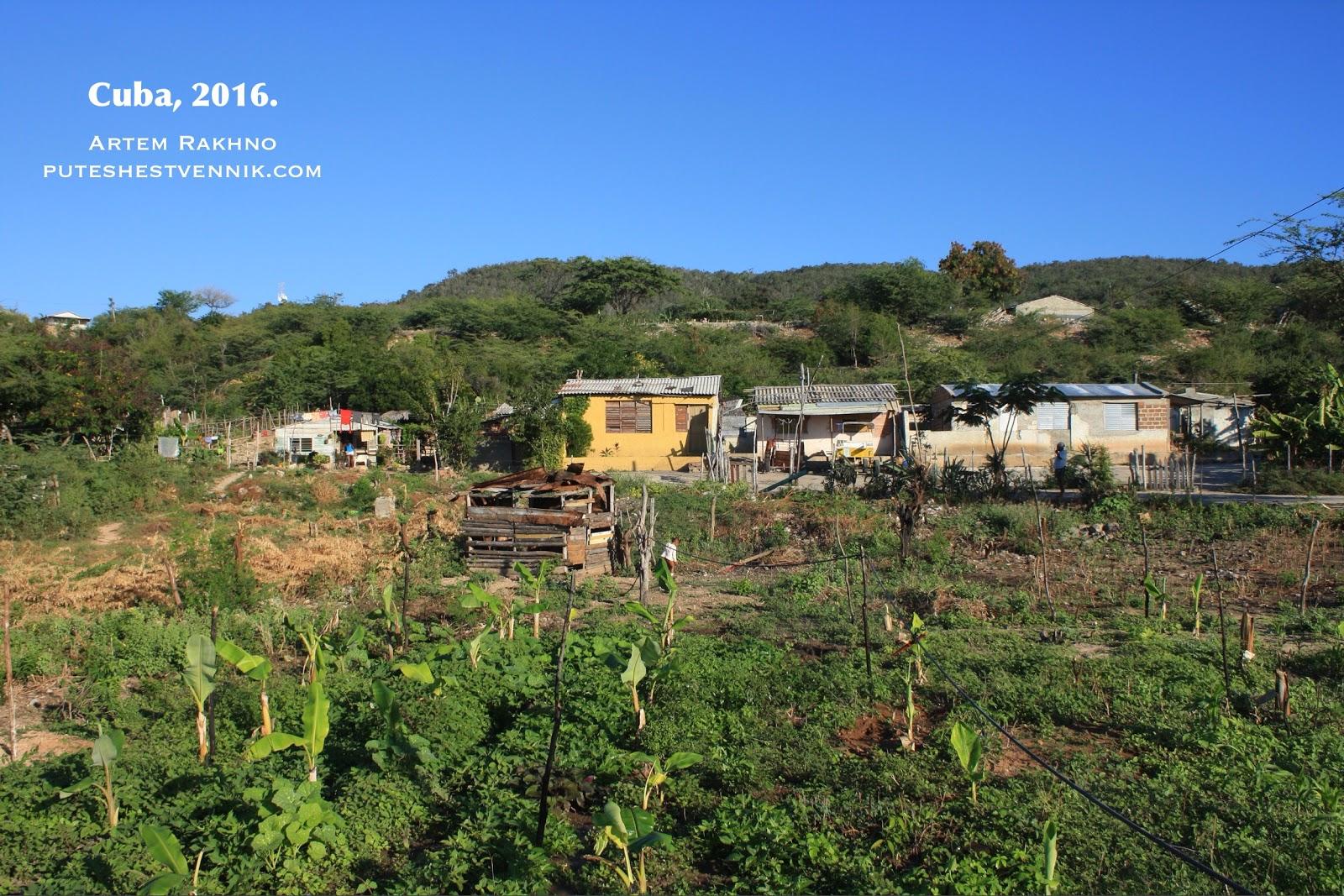 Огород в кубинской деревне
