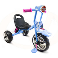 cinderella wimcycle tricycle