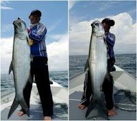 História de Pescador, Pescaria, Peixes, No de Pesca, Tarpon