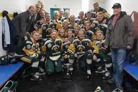 bus crash involving Hockey players