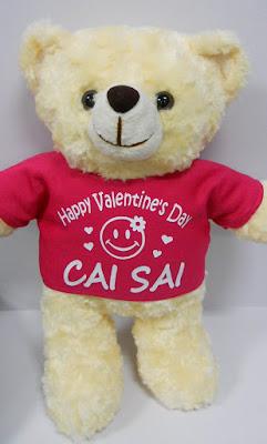 Customized tee shirt print on Teddy Bear