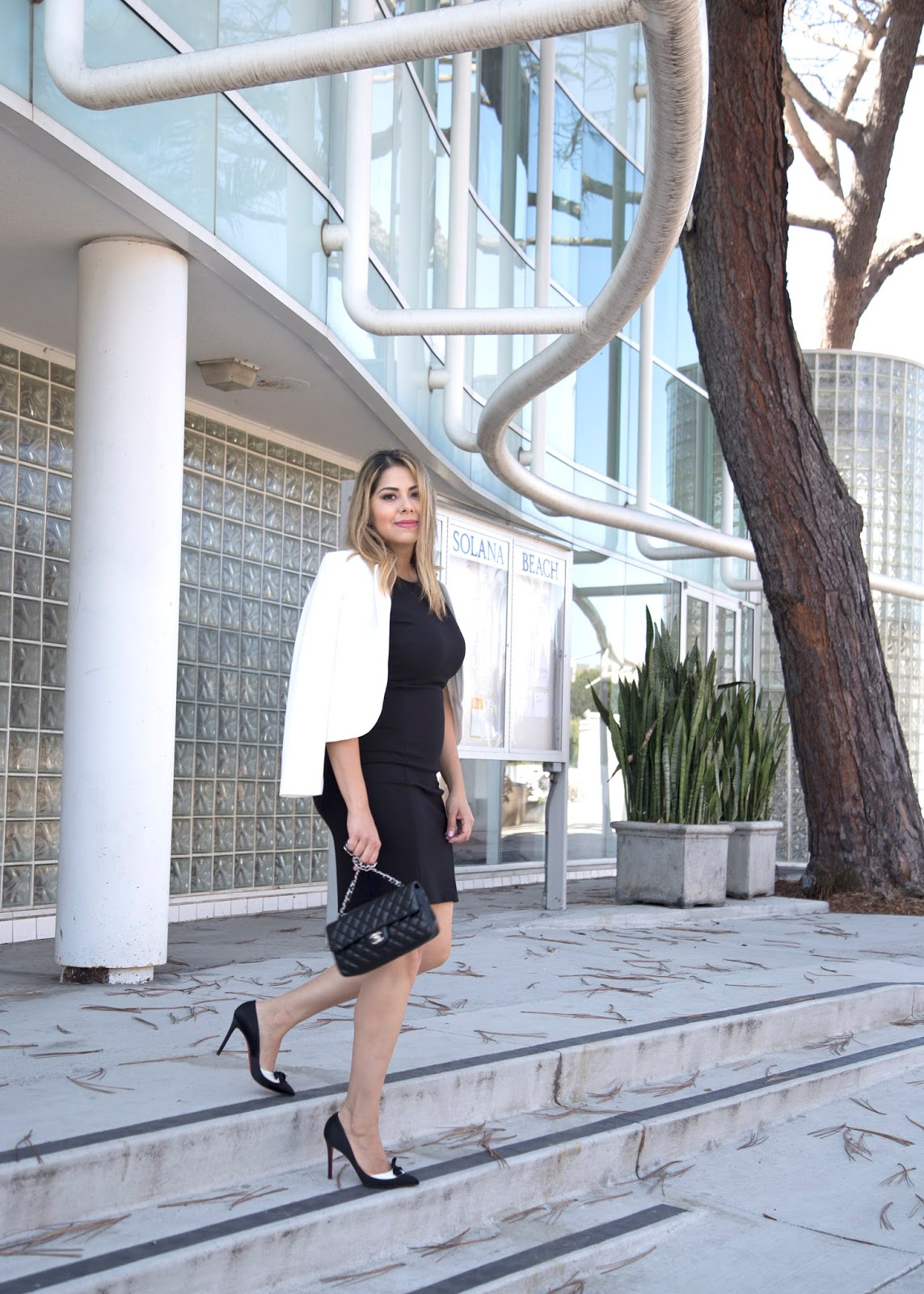how to wear louboutins in the work place, professional chic outfit, elie tahari black dress, chanel black and silver flap bag