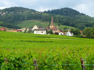 Wine Village Vineyards Alsace France