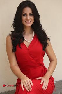 Actress Larissa Bonesi Pictures in Red Long Dress at Thikka Interview  0300.JPG