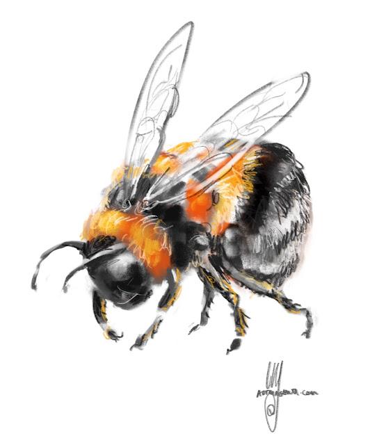 Bumblebee Painting by Ulf Artmagenta