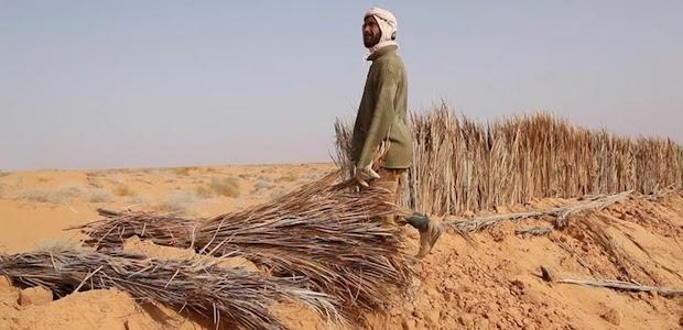 """La Tunisia """"tra sale e sabbia"""""""