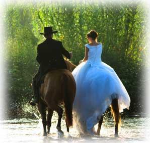 Western Wedding Theme Decorations  Have your Dream Wedding