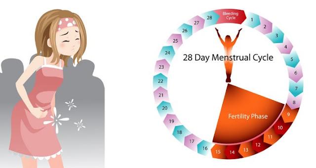 Penyebab dan Cara Mengatasi Menstruasi Tidak Lancar