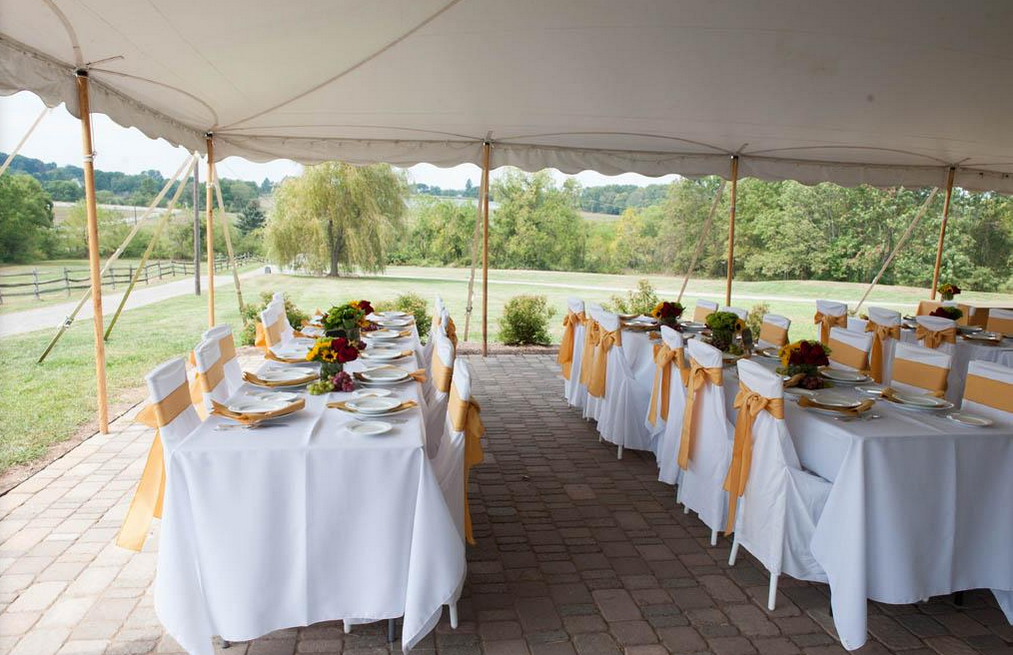 Unionville Vineyards Wedding Venues